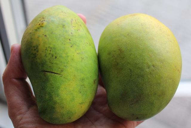 eine mango ist eine mango chez matze. Black Bedroom Furniture Sets. Home Design Ideas