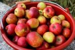 2 Äpfel