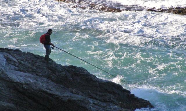 Angler Collioure