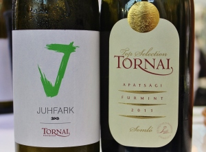 Ungarn - Tornai
