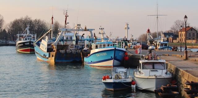 4 Honfleur Hafen