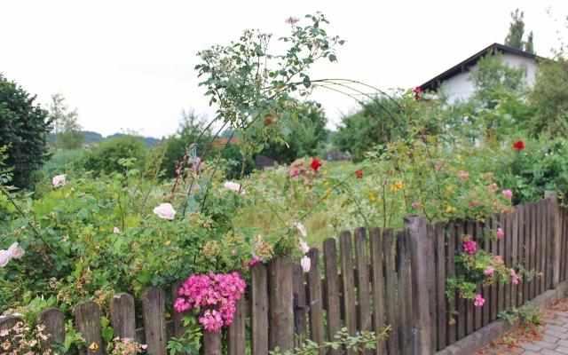 9 Bauerngarten