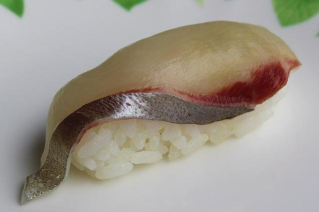 10 Shima-aji - Pseudocaranx dentex