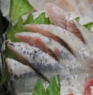 9 Iwashi - Engraulis japonica